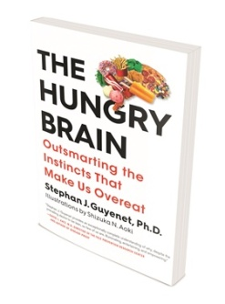 1072754_the-hungry-brain-17